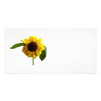Golden Sunflower Personalised Photo Card