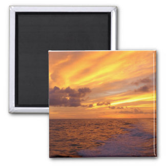 Golden Sunlight Magnet