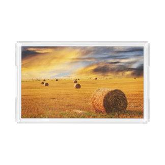 Golden Sunset Over Farm Field Acrylic Tray