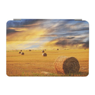 Golden Sunset Over Farm Field iPad Mini Cover