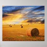 Golden Sunset Over Farm Field Poster