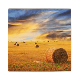 Golden Sunset Over Farm Field Wood Coaster