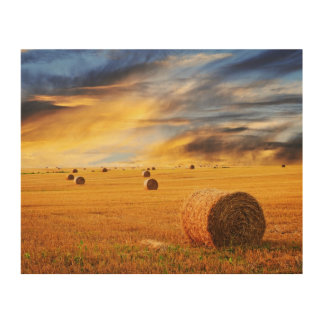 Golden Sunset Over Farm Field Wood Prints