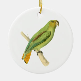 Golden-tailed Parrot Bird Illustration by William Christmas Ornament