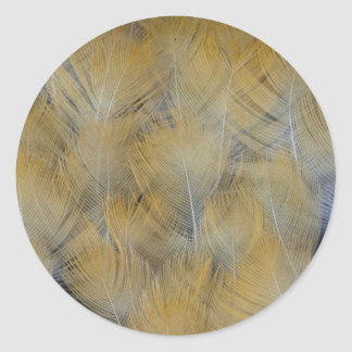 Golden Thrush Feather Abstract Classic Round Sticker