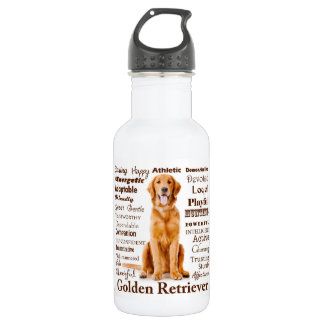 Golden Traits Water Bottle 532 Ml Water Bottle