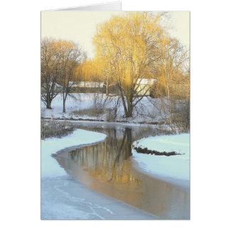 GOLDEN TREE REFLECTED IN PARTIALLY-FROZEN POND NOTE CARD