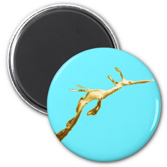 Golden Weedy Sea Dragon 6 Cm Round Magnet
