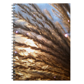 Golden Wheat Light Rays and Blue Sky Spiral Notebook