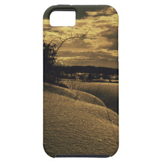 Golden winter case for the iPhone 5