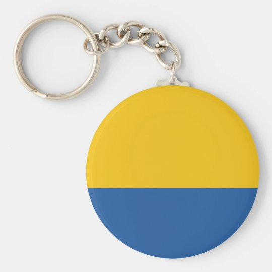 Golden Yellow and Royal Blue Basic Round Button Key Ring