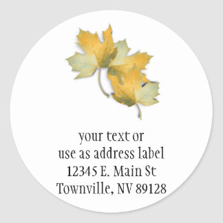 Golden Yellow  Fall Leaves Round Sticker