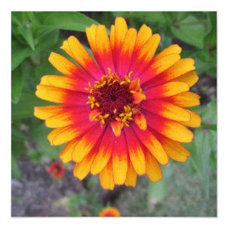 Golden Yellow Orange Zinnia Flower 13 Cm X 13 Cm Square Invitation Card