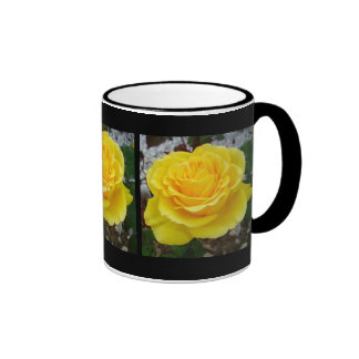 Golden Yellow Rose with Garden Background Coffee Mugs