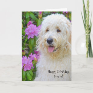KEEP CALM and LOVE YOUR LABRADOODLE Keyring Unique Christmas//Birthday Gift Idea