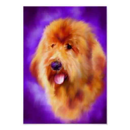 Goldendoodle Fine Art Print