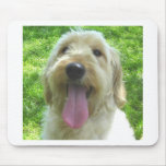 Goldendoodle Products Mouse Pad