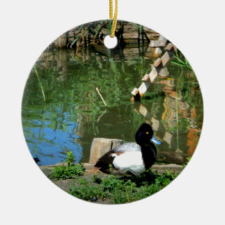 goldeneye duck at the pond christmas ornament
