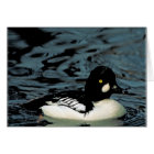 Goldeneye Duck Card