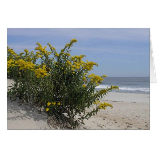 Goldenrod by the Sea Card