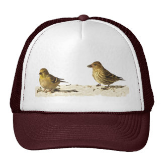 Goldfinch and Pine Siskin Mesh Hats