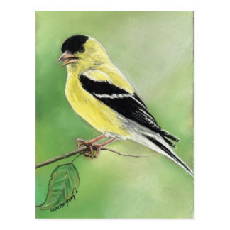 """Goldfinch"" Bird Art Postcard"