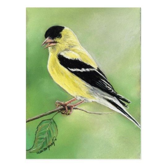 """""""Goldfinch"""" Bird Art Postcard"""