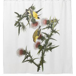 Goldfinch Birds Wildlife Audubon Shower Curtain