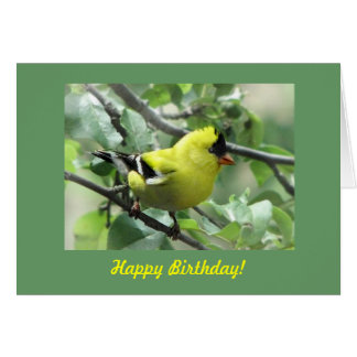 Goldfinch Birthday Card