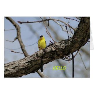 Goldfinch, Bright and Joyful Card