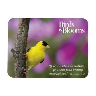 Goldfinch Rectangular Photo Magnet
