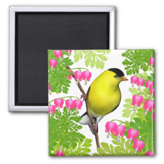 Goldfinch in Bleeding Heart Flowers Magnet