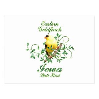 Goldfinch Iowa State Bird Postcard