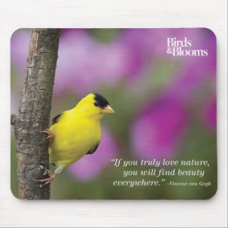 Goldfinch Mouse Mat