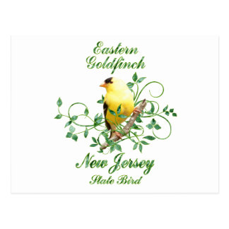 Goldfinch New Jersey State Bird Postcard