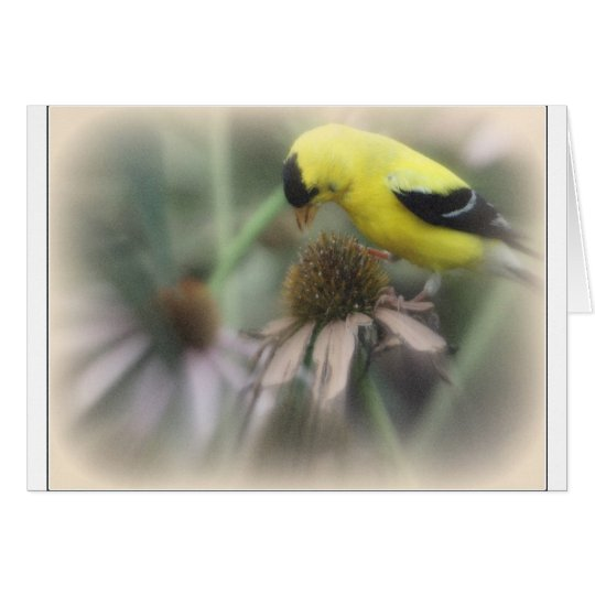 Goldfinch on Thistle Card