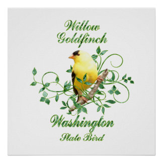 Goldfinch Washington State Bird Poster