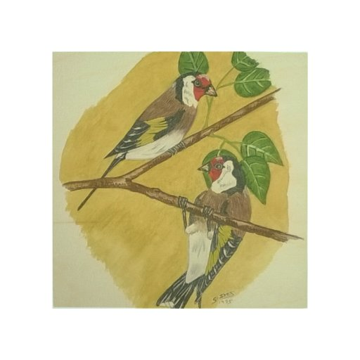 Goldfinch Wood Canvases