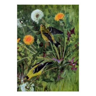 Goldfinches and Dandelions Print