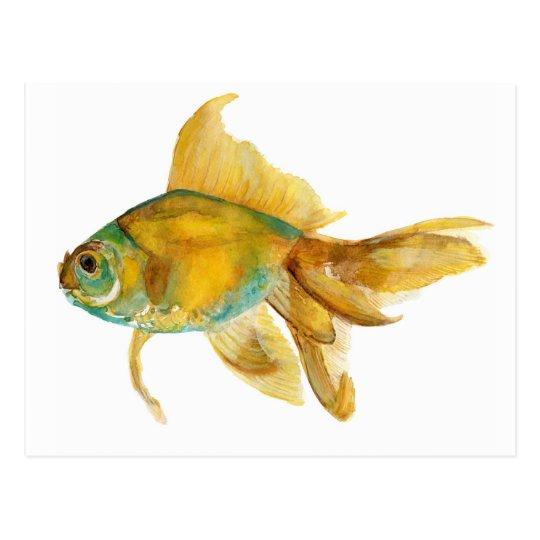 goldfish2.jpg postcard