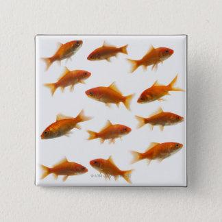 Goldfish 15 Cm Square Badge