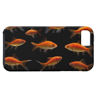 Goldfish 2 case for the iPhone 5