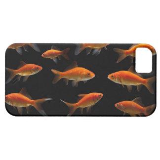 Goldfish 2 iPhone 5 cover
