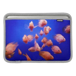 Goldfish 2 MacBook sleeve