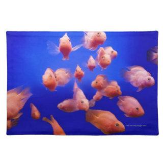 Goldfish 2 placemat