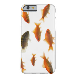 Goldfish 3 barely there iPhone 6 case