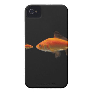 Goldfish 3 iPhone 4 cases