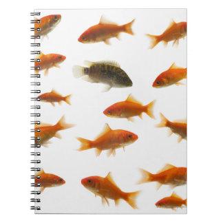 Goldfish 3 notebooks