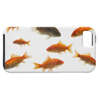 Goldfish 3 tough iPhone 5 case