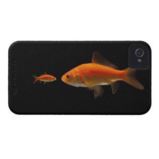 Goldfish 4 iPhone 4 case